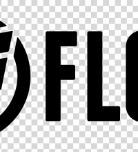 logo FLOW - Wood Stock Creation